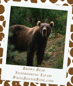 Notebooking Safari – Russia and the Brown Bear