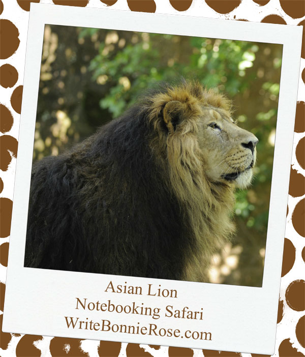 Asian lion and Israel Notebooking Page Safari2