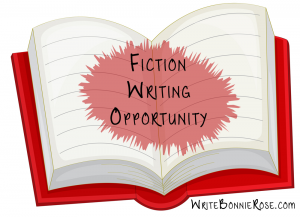 Fiction Writing Opportunity!