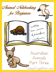 Animal Notebooking for Beginners - Australian Animals Pt. 3