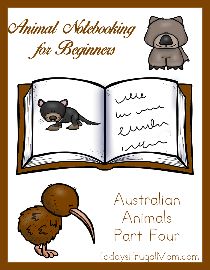 Animal Notebooking for Beginners, Australian Animals Part Four