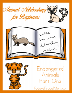 Animal Notebooking for Beginners – Endangered Animals, Pt. 1