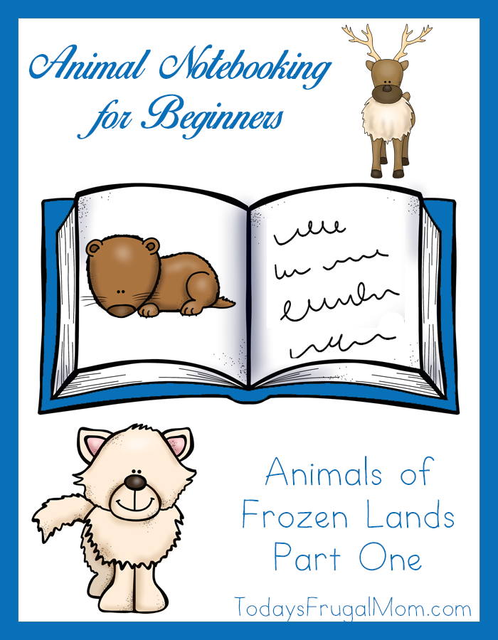 Animal Notebooking for Beginners, Animals of Frozen Lands, Pt. 1