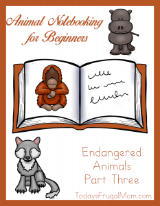 Animal Notebooking for Beginners, Endangered Animals, Pt. 3