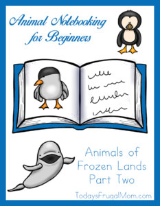 Animal Notebooking for Beginners, Animals of Frozen Lands, Pt. 2