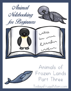Animal Notebooking for Beginners, Animals of Frozen Lands, Pt. 3