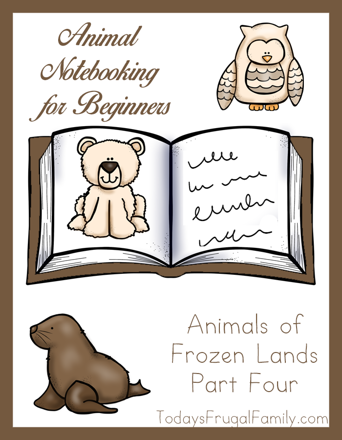 Animal Notebooking for Beginners, Animals of Frozen Lands, Pt. 4