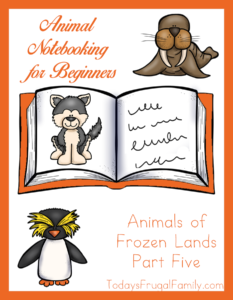 Animal Notebooking for Beginners, Animals of Frozen Lands, Pt. 5