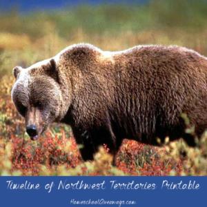 Timeline Worksheet: July 15, 1870, FREE Timeline of Northwest Territories History