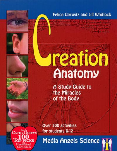 Creation Anatomy