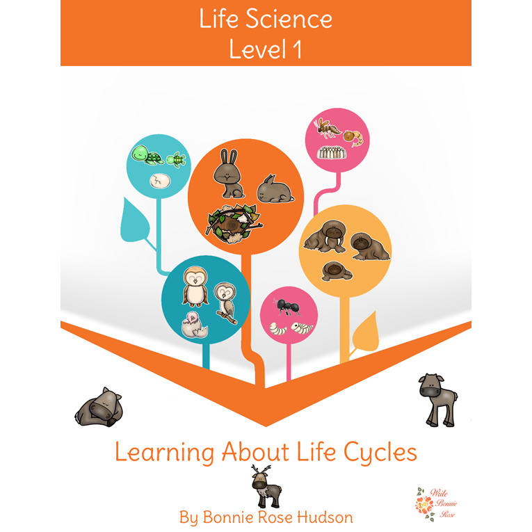 Learning About Life Cycles-Learning About Science, Level 1 (e-book)