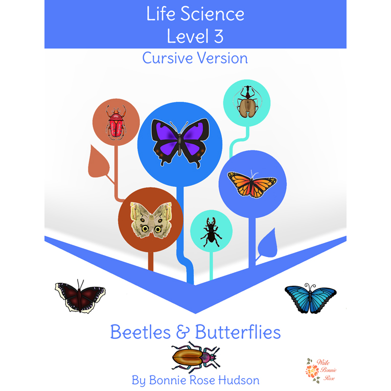 Beetles and Butterflies- Learning About Science, Level 3 Cursive Version (e-book)